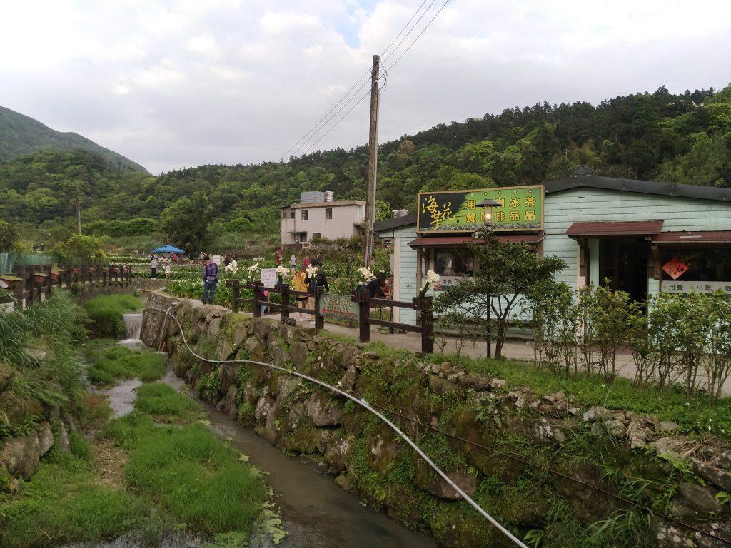 5月3日(三) 本日の台北