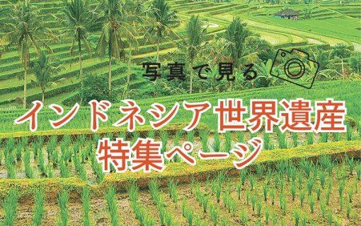 バリ島 世界遺産特集!!【バリ島・観光情報】