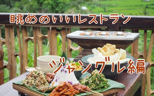 ウェンディーツアーバリおすすめベスト3〜眺めの良いレストラン ジャングル編〜【バリ島・レストラン情報】