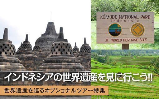 《2020年最新情報》インドネシアの世界遺産を見に行こう!!世界遺産を巡るオプショナルツアー特集【インドネシア・観光情報】