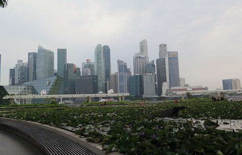【シンガポール 旅行情報】恵の雨、そして空気が変わった♡