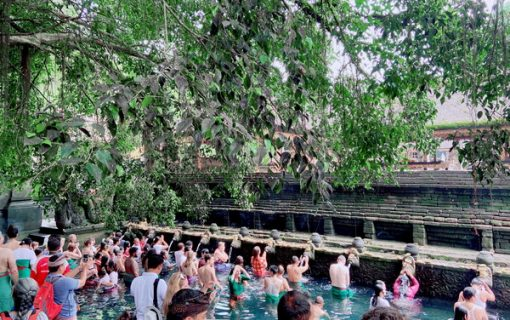 【バリ島観光】パワースポット!ティルタウンプル寺院とバリ植物園