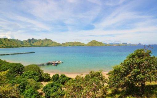知られざる至福の楽園を訪ねて<世界自然遺産・コモド島>【バリ島・観光情報】