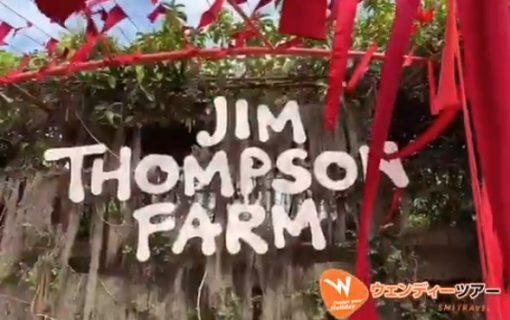 【動画】パクトンチャイにあるジムトンプソンファームのお花畑