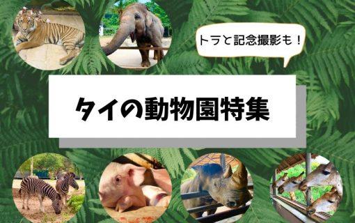 トラと写真撮影も!タイ・バンコク発の動物園特集【バンコク・観光情報】