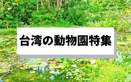 意外と知られてない!?台湾の動物園特集