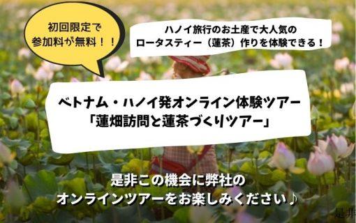 【オンライン体験ツアー】7/4蓮畑訪問と蓮茶づくり※初回なので無料!!