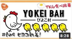 【動画】コロナに負けるな!コタキナバルより「ぴよこ村への道・その9 ついにヒヨコちゃん達の到着!」