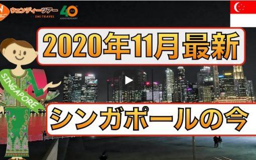 【動画】2020年11月最新!シンガポール各地の現状を撮影しました《夜景編》