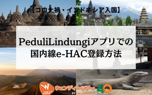 【コロナ禍・インドネシア入国】PeduliLindungiアプリでの国内線e-HAC登録方法